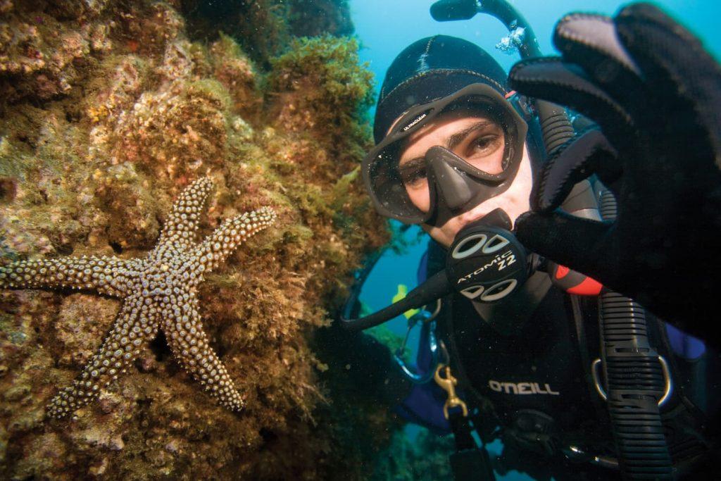 PADI Starfish OK