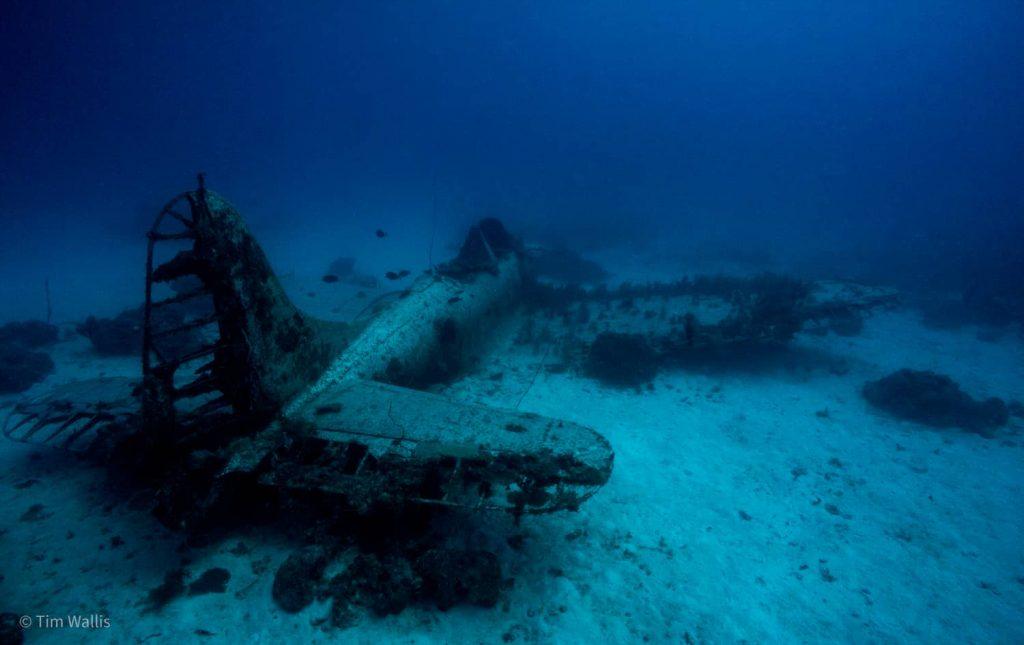 Wreck Dive Plane by Tim Wallis