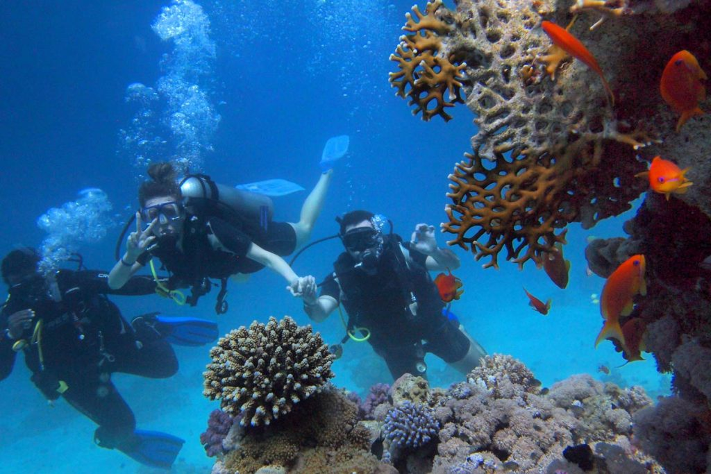 Three People Scuba Diving