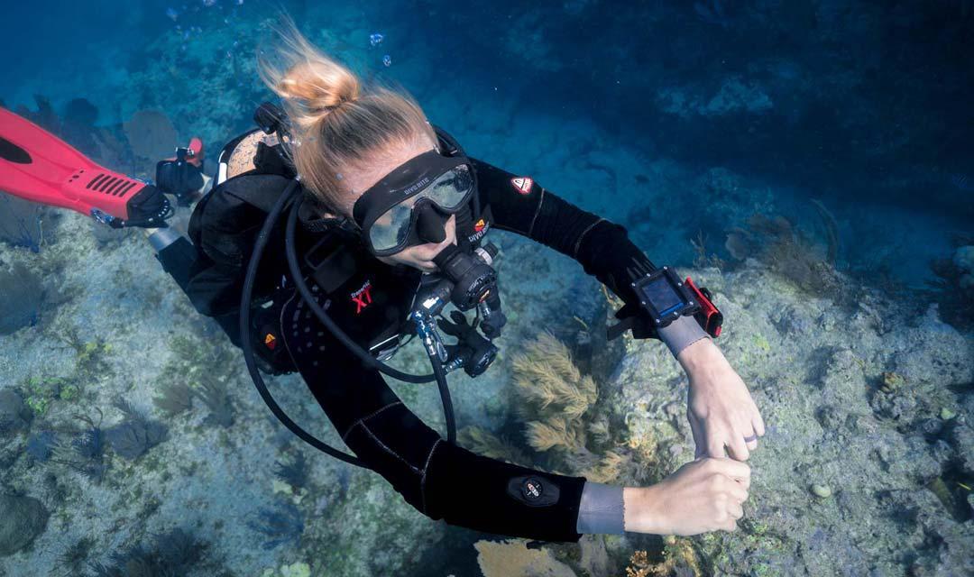 SDI-Diver-Exploring-Ocean-Photo