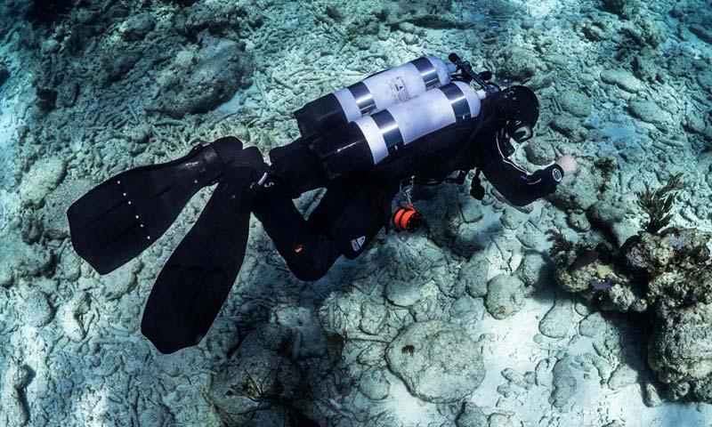Scuba Diver in Ocean