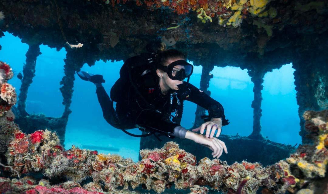 sdi-diver-exploring-small-wreck